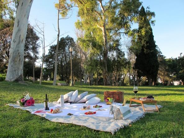 barcelona picnic.jpg